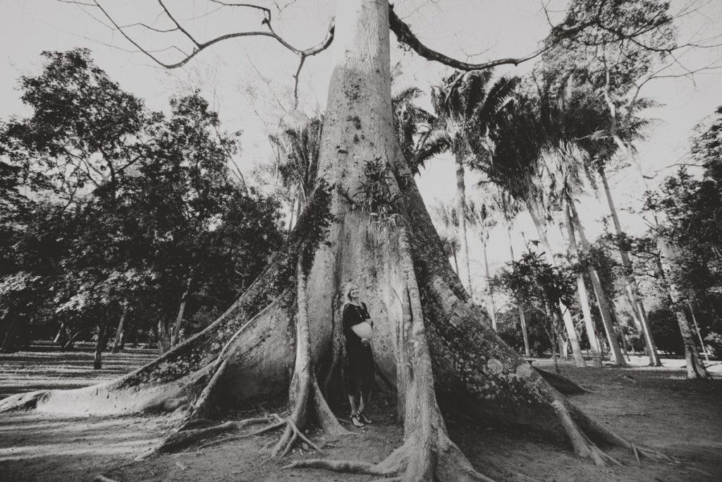 ensaio fotografico gestante jardim botanico